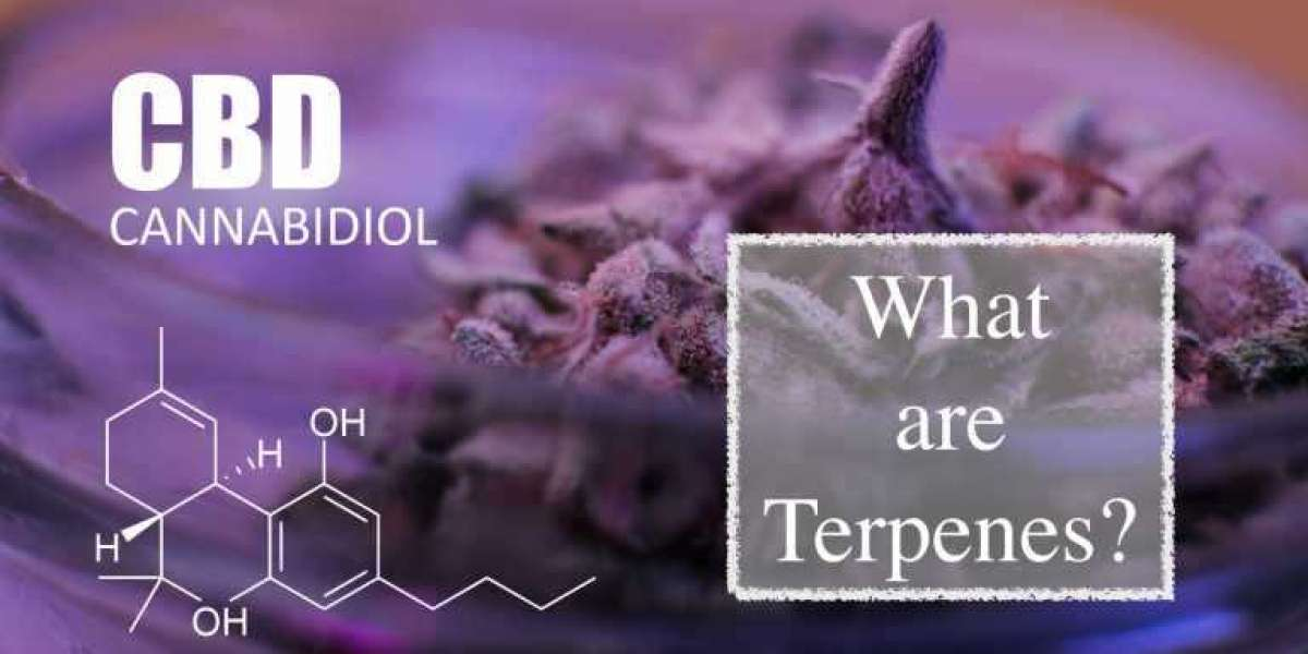 What are cbdflowers and how are they beneficial?